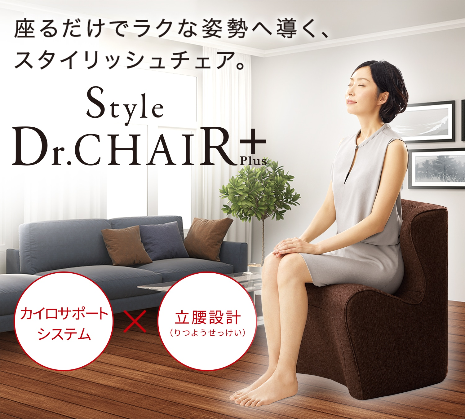 Style Dr.CHAIR Plus,スタイル ドクターチェアプラス